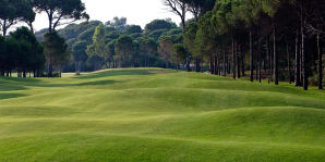 Sueno Pines Golf