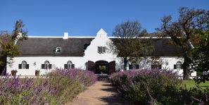 Steenberg Farm Golf Package